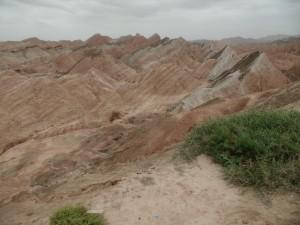 SAM_0769 (1280x960)